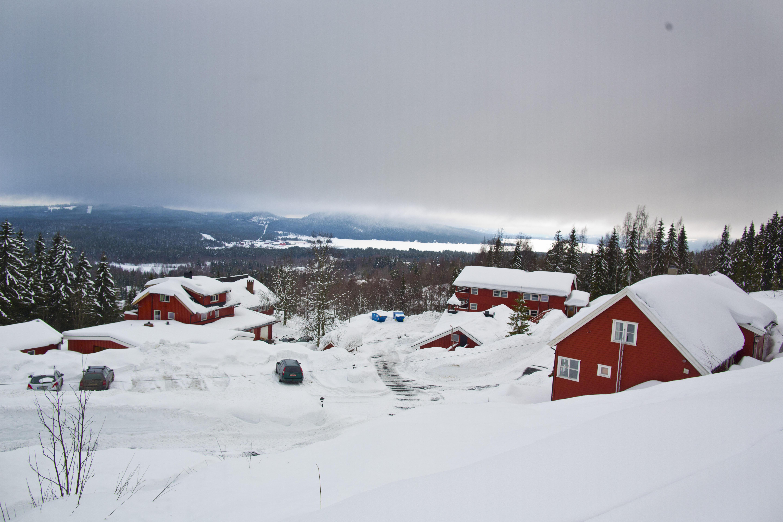 Tunet i snølandskap
