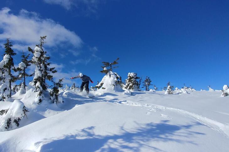 Fra den årlige brettleiren til Tyrili Brettklubb, med kjøring i Hafjell og overnatting på Tyrilitunet i Mesnali. Foto: Anton Andreason, Tyrilistiftelsen