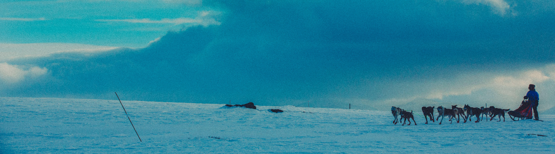 Hundespann i nærheten av Tyrili Frankmotunet i Folldal.