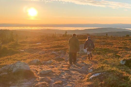 Tyrili-pasienter på tur i høstfjellet.